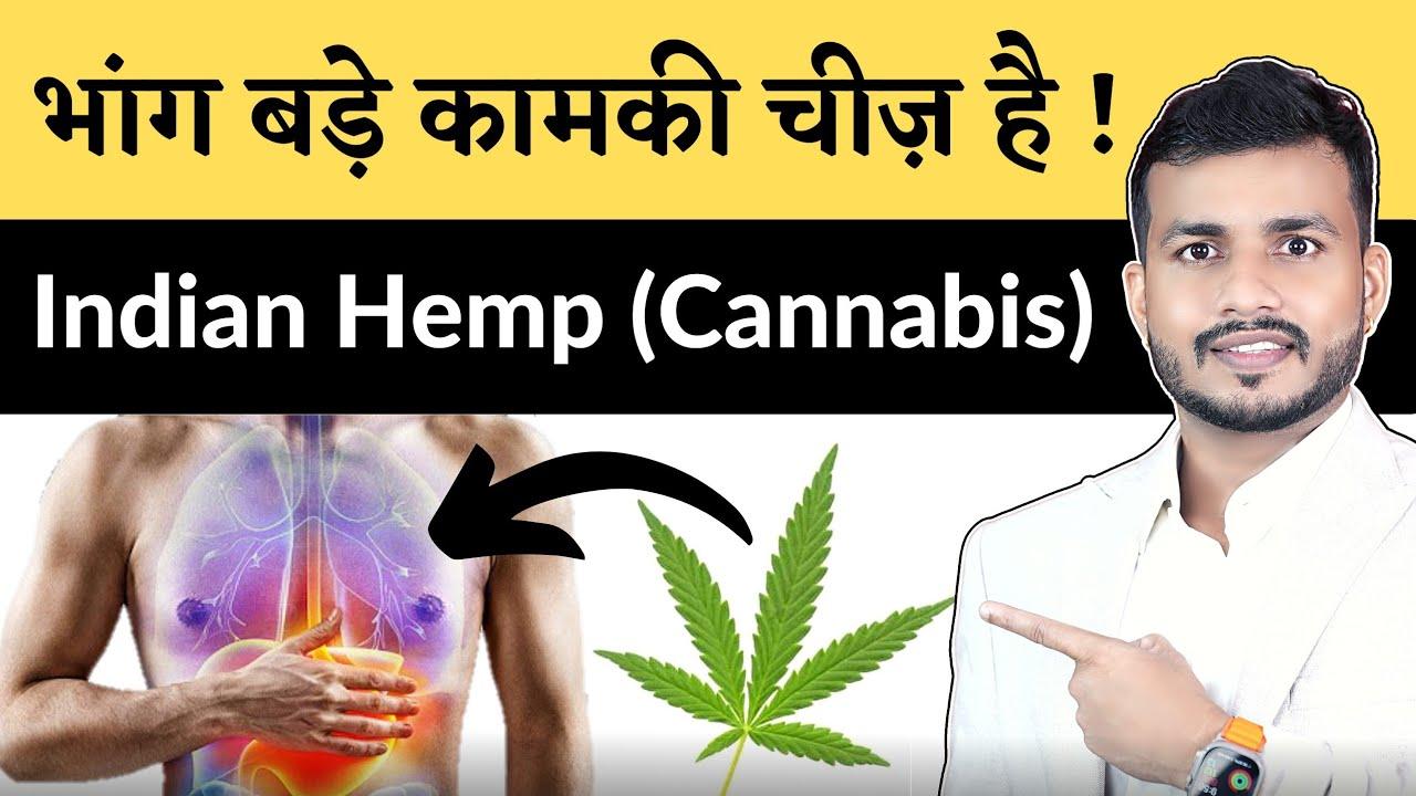 Download Cannabis-Indian Hemp Ayurved Analysis's-भांग: ऐसा फ़ायदा सुना ना होगा | Dr. Arun Mishra | Ep431