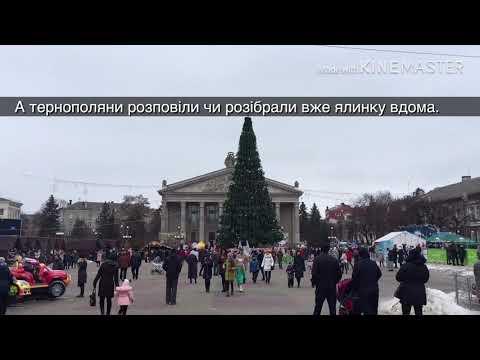 Новини Тернополя 20 хвилин: Опитування: чи розібрали тернополяни ялинку