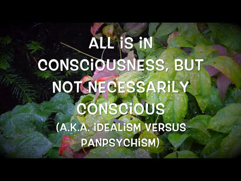 All is in consciousness, but not necessarily conscious