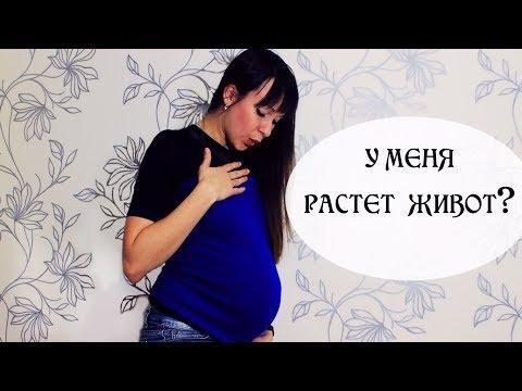 Когда начинает расти живот у беременных? | С какого месяца растет живот? | Наталья Бубнова