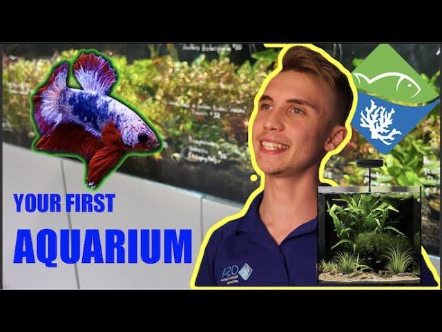 What is the BEST beginner aquarium?? All-In-One Aquariums with Freshwater Joe