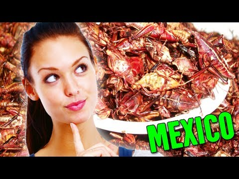 Things You CAN Do in Mexico (You CAN'T Do in the United States)