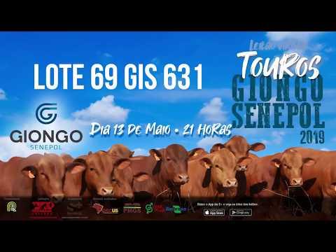 LOTE 69 GIS 631