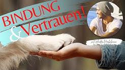 Bindung & Vertrauen zwischen Mensch und Hund