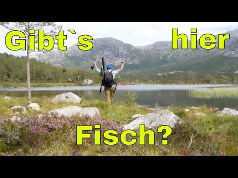 Abgelegener Bergsee In Norwegen.  Gibts Hier Fisch???
