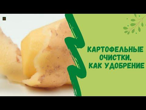 Картофельные очистки, как удобрение