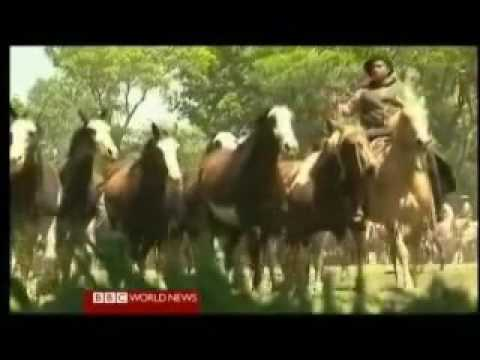 Explore Argentina Patagonia to the Pampas 4 of 4 BBC Travel Documentary