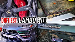 Car Detailing The DIRTIEST Lamborghini Urus EVER - Interior & Exterior Car Wash - Stauffer Garage