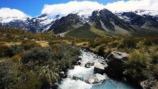 Top 5 Neuseeland Highlights, die Du nicht verpassen darfst!