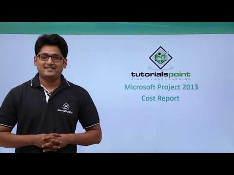 MS Project 2013 - Cost Report