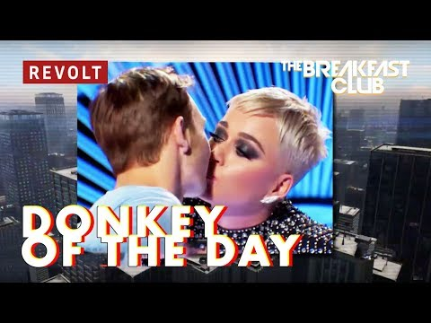 Katy Perry | Donkey of the Day