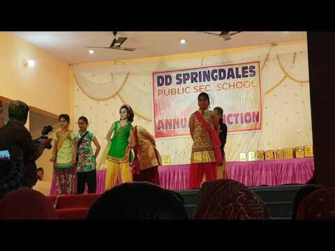 DD Springdales public School Annual function sujangarh 2017