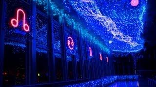 東京タワー3大イルミネーションの一つ、夏の「天の川イルミネーション」...