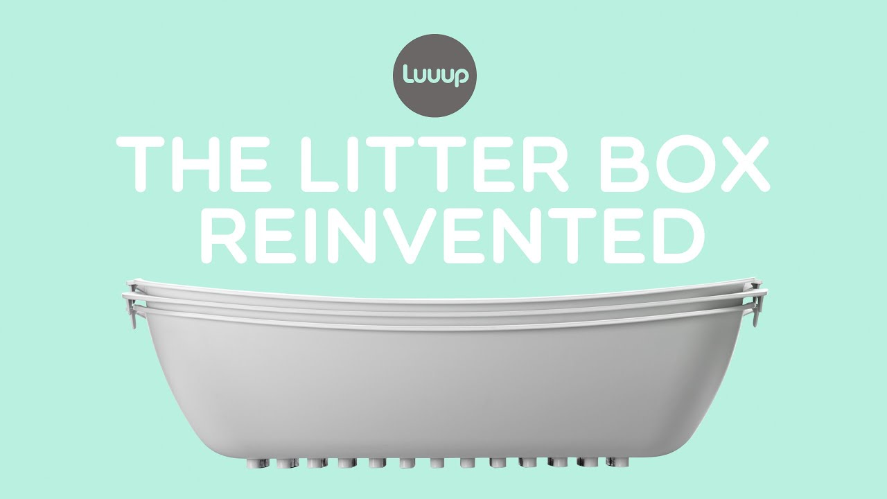Luuup Litter Box The Best Cat Litter Box Ever Made Youtube