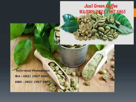 0821 1967 6865 100 pure green coffee bean extract