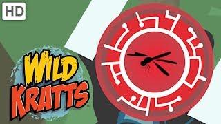 Wild Kratts - Brilliant Bugs Creature Powers | Kids Videos