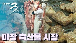 [다큐3일] 고기 한 점! 마장 축산물 시장 72시간 (풀영상)