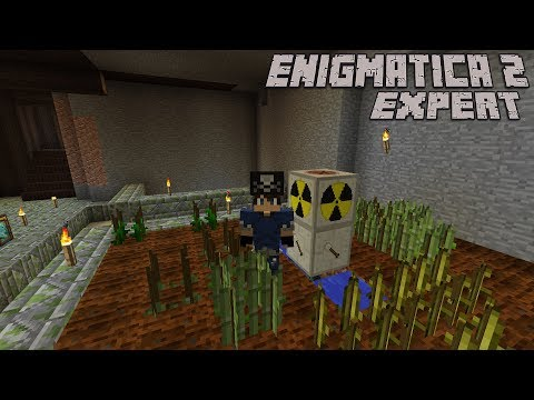 Automatic Rubber and IC2 Crop Crash Course : Enigmatica 2