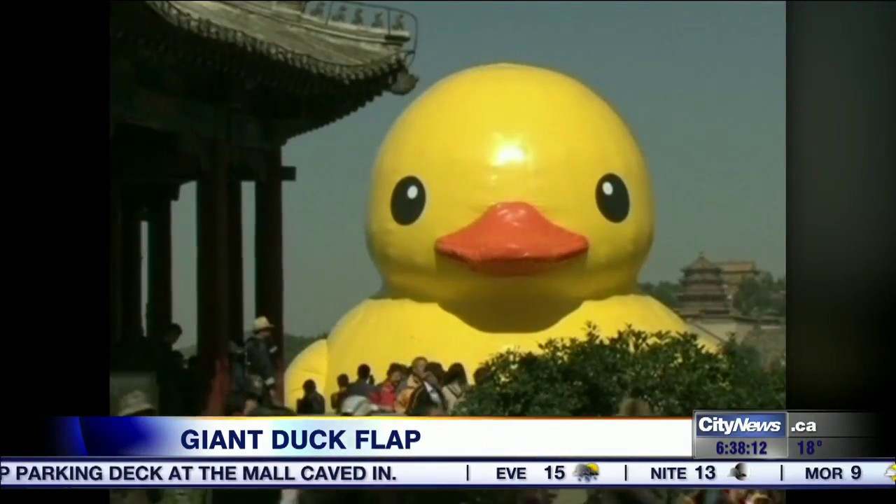 First to review yellow rubber duck click here to cancel reply - Giant Rubber Duck Coming To Toronto Counterfeit Dutch Artist Claims