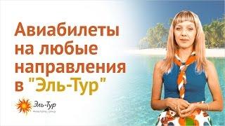 Билеты на самолет из Новосибирска Сайт дешевых авиабилетов  www el avia ru