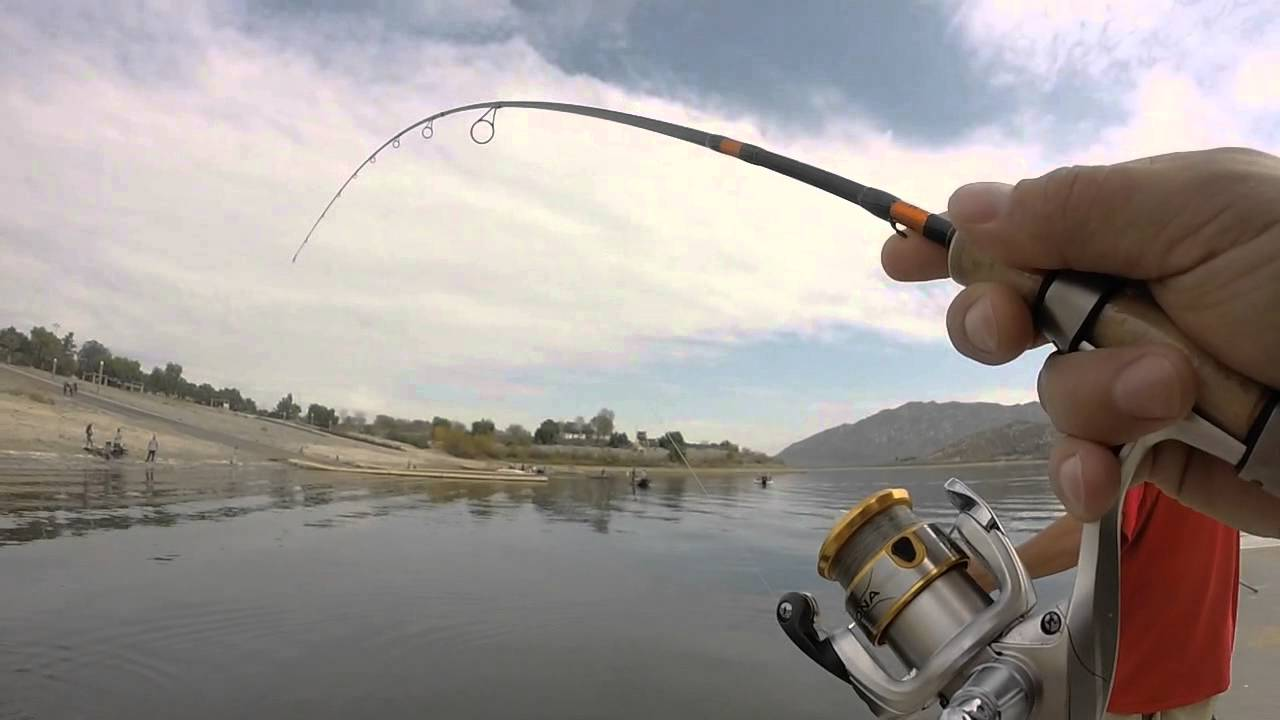 Tf01 lake perris trout fishing gopro footage youtube for Lake perris fishing report