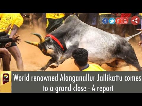 World renowned Alanganallur Jallikattu comes to a grand close - A report