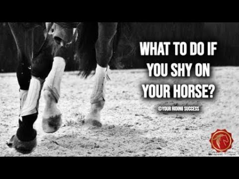 Download WHAT TO DO IF YOU SHY ON YOUR HORSE? - FearLESS Friday Episode 69