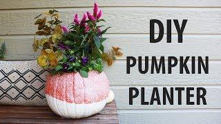 DIY | How to Make A Fall Pumpkin Planter