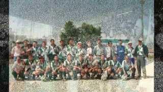 Unidos ao Porto Futebol Clube