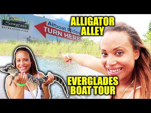 Best Everglades Airboat Tour   Fun Things To Do In Fort Lauderdale