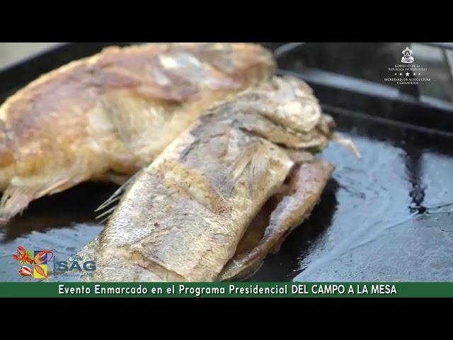 Precio y Sabor en FeriSAG Mariscos y Más, Del Campo a la Mesa