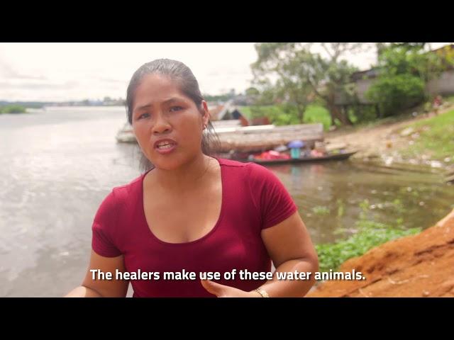HIDROVÍA AMAZÓNICA  (con subtitulación al Inglés)