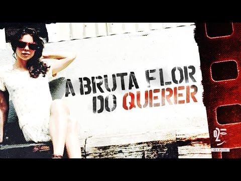 Trailer do filme A Bruta Flor do Querer