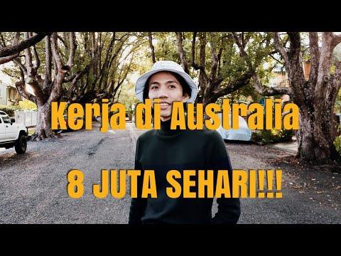 GAJI 8 JUTA SEHARI WHV AUSTRALIA INDONESIA