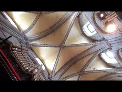 Male Cathedral Choir Durham