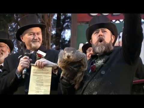 Groundhog Day 2019: Punxsutawney Phil Doesn't See His Shadow, Meaning Early Spring