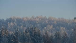 Мороз и солнце. Немного зимней природы Мурманска.
