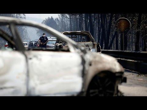 Feuer in Portugal: Dutzende Tote, überforderte Feuerwehr