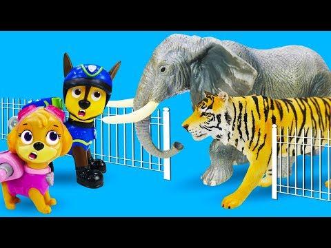 Игрушки Щенячий патруль ищут животных! Детское видео про игрушечный зоопарк!