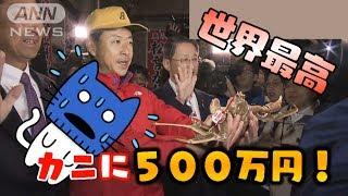 カニに世界最高500万円!食べるのは!?【マスクにゃんニュース】