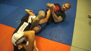 Daily BJJ: Ankle Lock & Knee Bar from Z Guard/Knee Shield/Half Guard