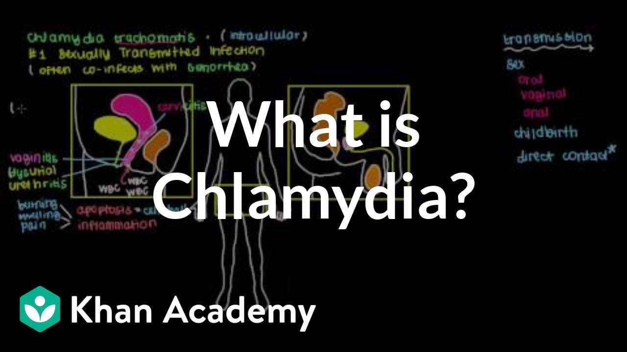 can chlamydia kill an unborn baby