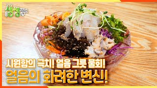 [2TV 생생정보] 시원함의 극치~ 얼음 그릇 물회?! 더위 타파! 얼음의 화려한 변신 | KBS 21072…