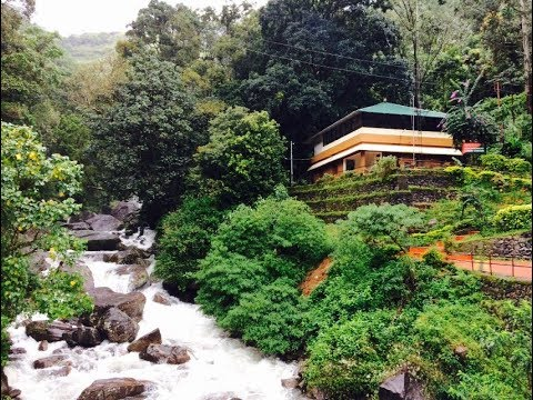 A Scenic Road Trip From Bangalore to Munnar