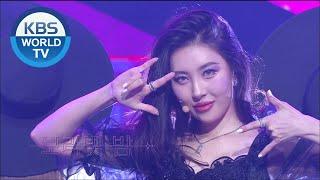 SUNMI(선미) - pporappippam(보라빛 밤) [Music Bąnk / 2020.07.10]