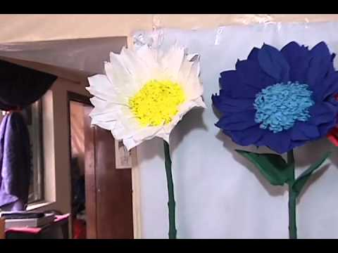 Flores Gigantes Citytv Youtube