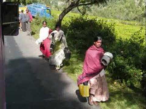 Scenes of Ooty, high in the Nilgiri Hills