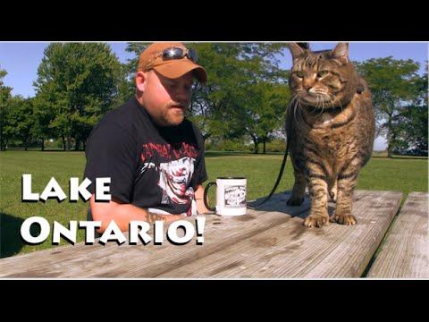 Lake Ontario Camping, No Water Workaround & Sunsets
