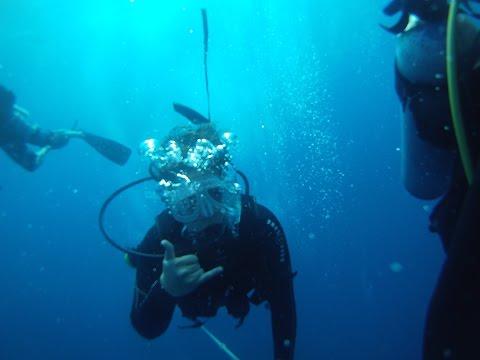 Diving Adventures 2016