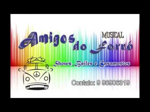 Musical Amigos do Forró